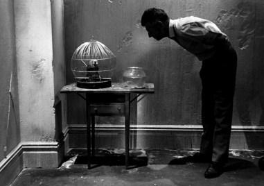 Beckett 19.jpg